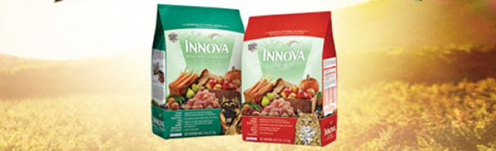 Pet food recalled amid salmonella concerns